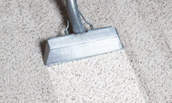 Carpet Cleaning Tips You Can Use at Home